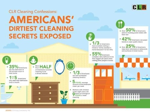 America's Dirtiest Cleaning Secrets and Habits Exposed